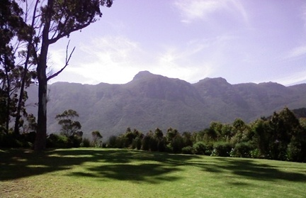Constantia Accommodations Guesthouses