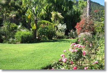 South Africa Accommodation Guesthouses Constantia Lodge Suite