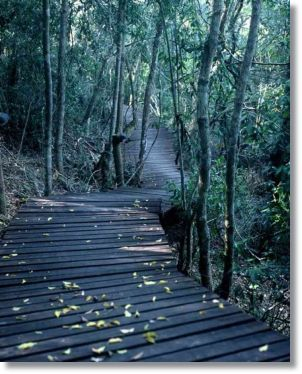 Knysna Outdoor Hiking Accomodation