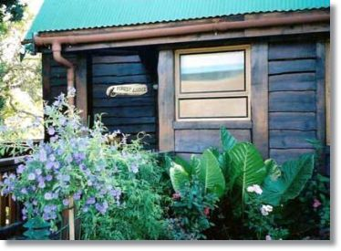 Garden Route Holiday Homes