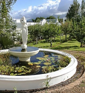 Stellenbosch Guest House Cape Town Accommodation