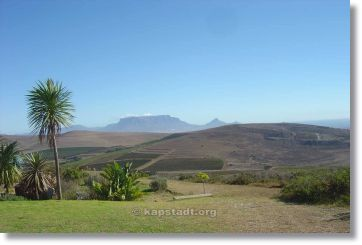 Durbanville Wine Area
