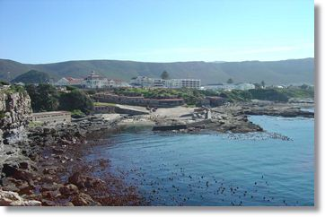 Hermanus Coast